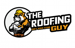 The Roofing Guy